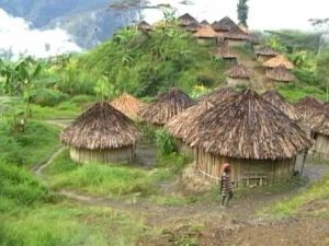 Индонезия и Ириан Джайя нестандартные туры