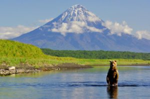 Эксклюзивные туры на Камчатку