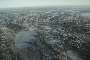 Фото базы Территория Медвежий угол общие