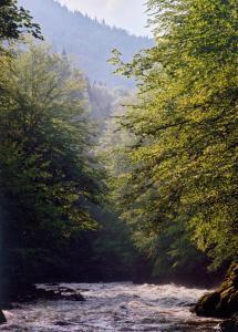 Адыгея Северный Кавказ туры сплав