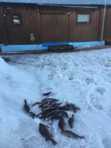 Рыбалка в Тверской области